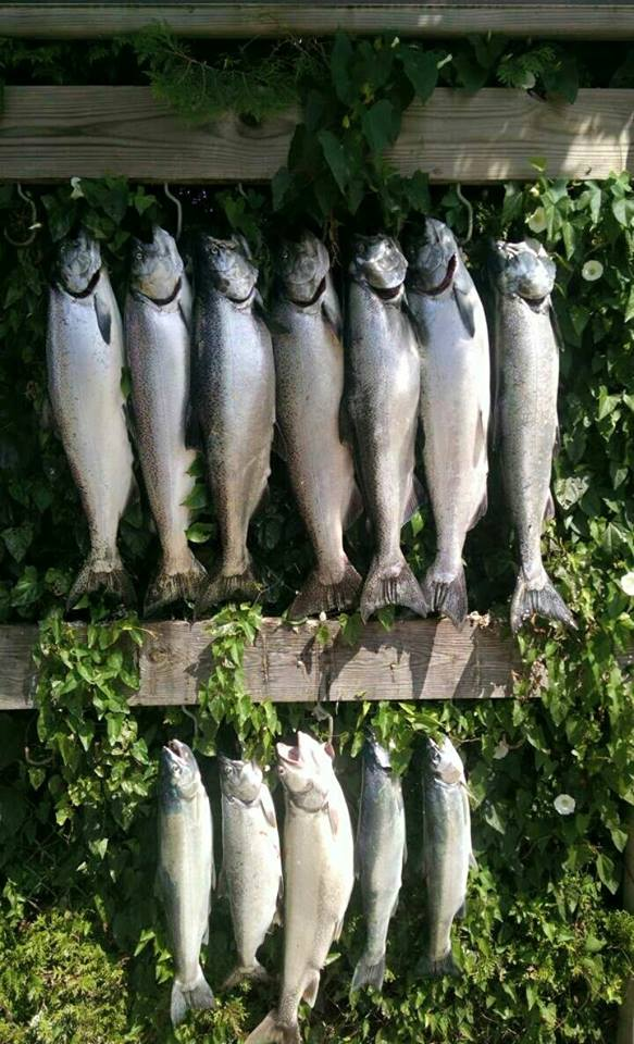 Holland Fishing Charters